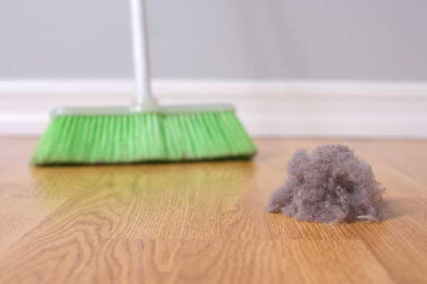 how to reduce dust in home